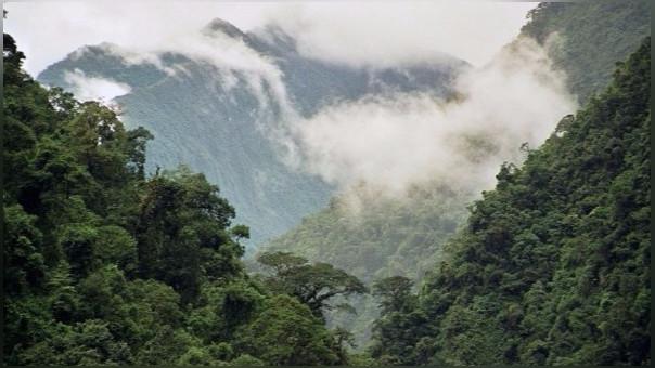 Las Naciones Unidas alertaron sobre las consecuencias del cambio climático en Latinoamérica.