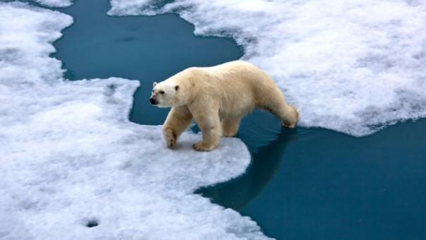 La preocupación por el cambio climático ha unido en tiempo récord a potencias como China y Estados Unidos.