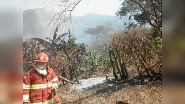 Habitantes de Utcubamba y Bagua temen que incendio se propague a sus viviendas.