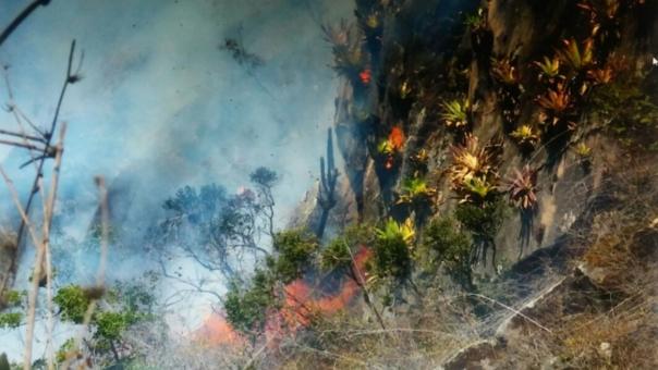 Incendio en Laquipampa