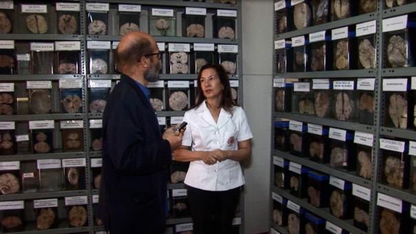 Diana Rivas en uno de los tres secciones del museo del cerebro.