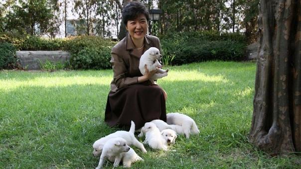 Durante su presidencia, Park compartió varias fotos con sus mascotas.