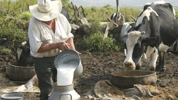 ganaderos lambayeque