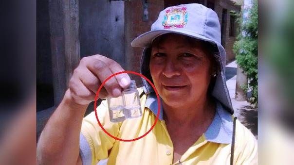 Larvas dengue