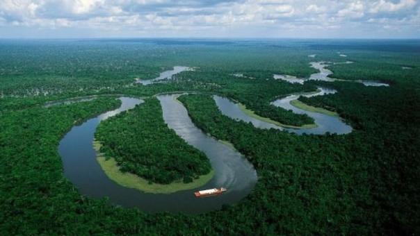 Resultado de imagen para amazonia peruana
