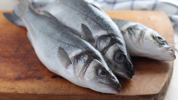 Algunas especies marinas pueden estar expuestas al mercurio.