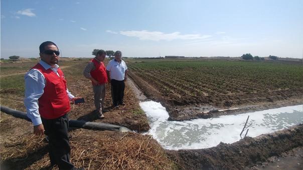 Riegan cultivos con aguas de desagües