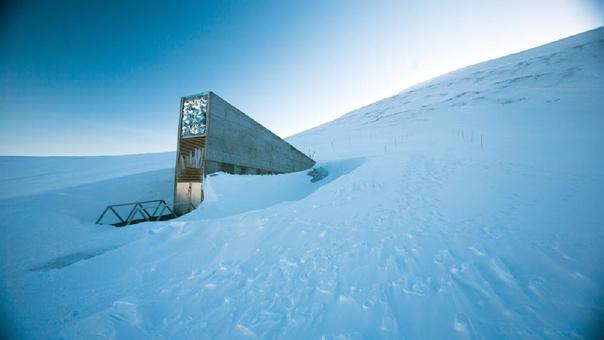 Así es la Bóveda del Fin del Mundo, la reserva de semillas más grande del mundo.