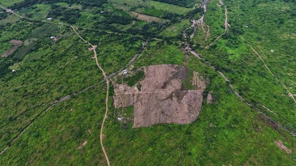 Toma aérea del espacio deforestado dentro de la ACP Chaparri, sector de Pampa Yaipón.