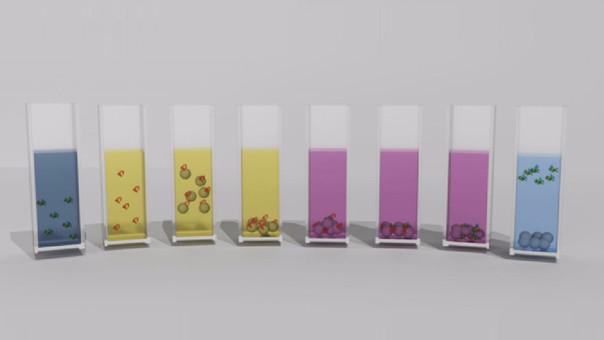 """Proceso de """"resurrección"""" de proteínas con la ayuda de nanopartículas de óxido de aluminio."""
