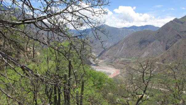 Bosques secos ubicados alrededor del río Pampas, Apurímac.