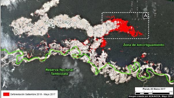 Deforestación en Tambopata