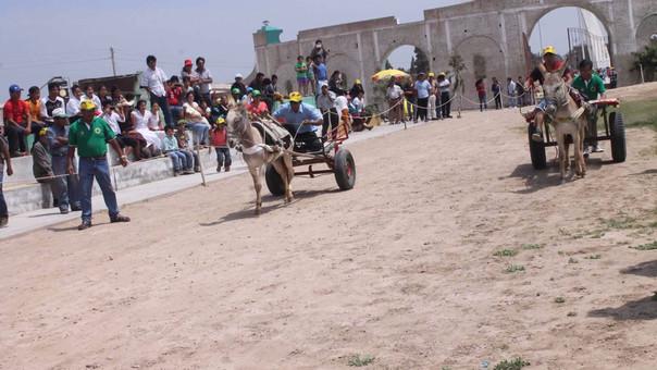 Carreta con burritos es un sistema de transporte ancestral de los recanos.