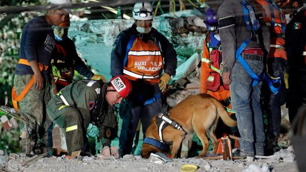 Los rescatistas siguen trabajando para encontrar y rescatar sobrevivientes. Sin embargo, este viernes se cumplirán 72 horas desde el sismo, con lo que las posibilidades de nuevos hallazgos se reducen.