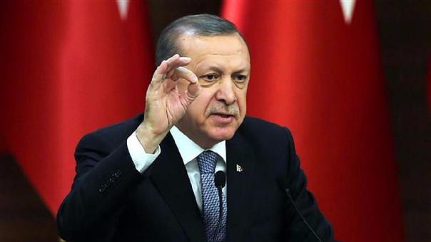 Erdogan afirma que