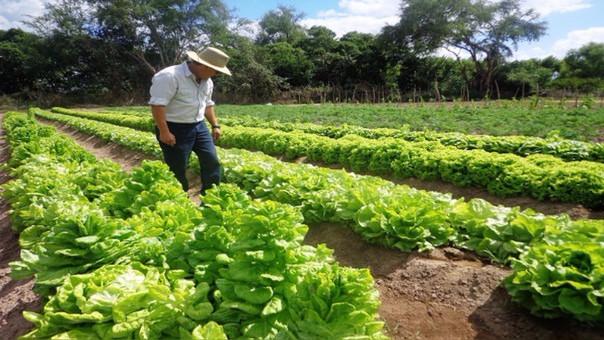 Agricultores reunidos piden se apruebe la certificación de productos orgánicos.