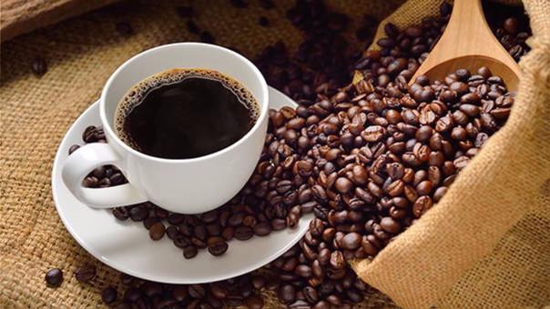Café se produce en solo 2 hectáreas a 1,800 msnm.