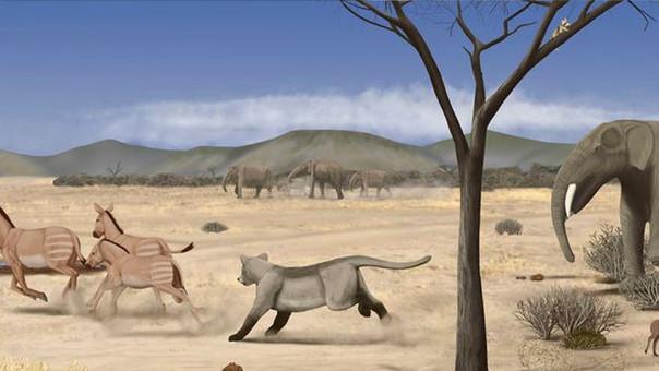 una sabana semidesértica se ubicó en madrid hace 14 millones de años