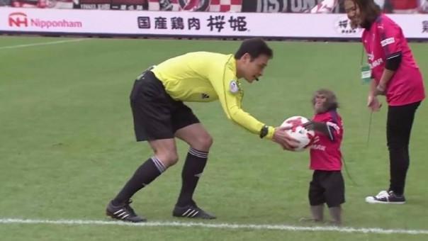 Liga de Japón