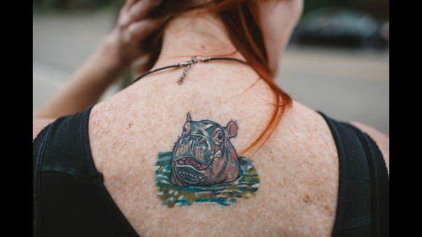 Michelle Curley, directora de comunicaciones del zoológico, muestra su tatuaje de Fiona.