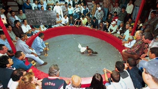 Concentración para pelea de gallos termina con dos fallecidos