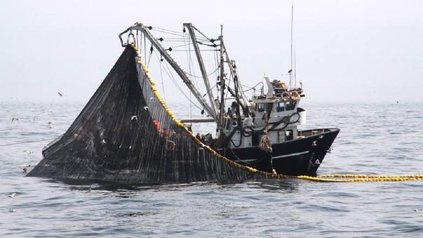 Produce: Segunda temporada de pesca de anchoveta finalizará el 26 de enero de 2018.