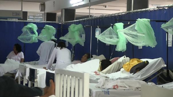 En lo que va del año se han reportado casos confirmados de tres enfermedades ocasionadas por el vector aedes aegypti.