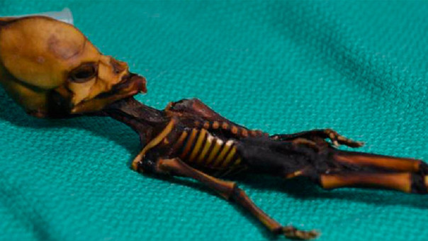 La pequeña momia de Atacama no es un alien — Misterio resuelto