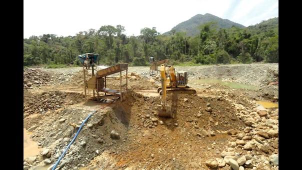Camanti: el bosque que lucha contra la minería