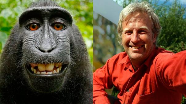 David Slater acordó donar el 25% de los ingresos futuros de las selfies de Naruto a las organizaciones que protegen el hábitat de los macacos negros de cresta en Indonesia
