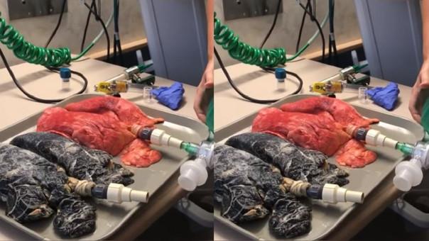 El video se hizo viral tras ser compartido en el Facebook de la médico que lo grabó.