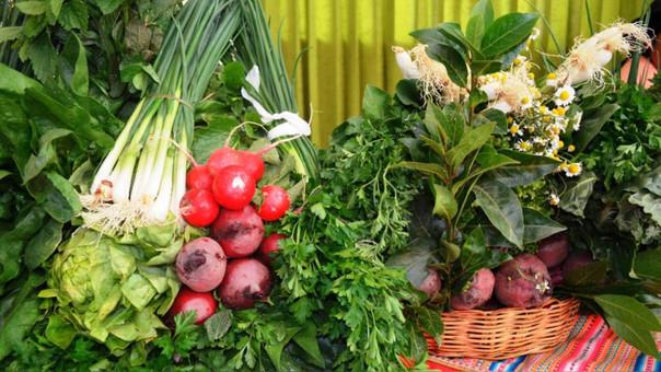 Verduras son amenazadas por el cambio climático.