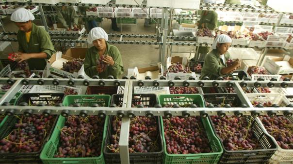 Los gremios empresariales involucrados en el sector pedían que la ley agraria que vence el 2021, se extienda al 2050. Según establece el Código Tributario vigente esto no es factible.