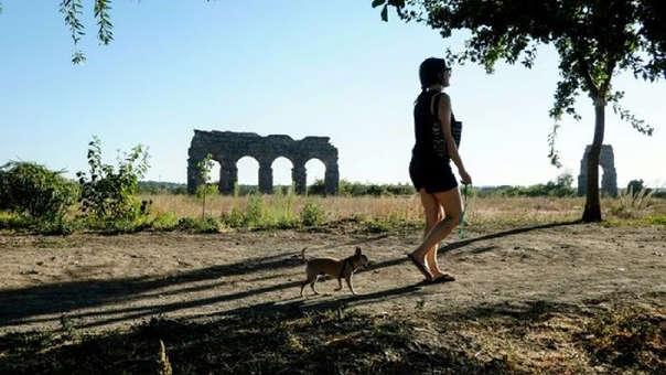 Una mujer pase a su perro.