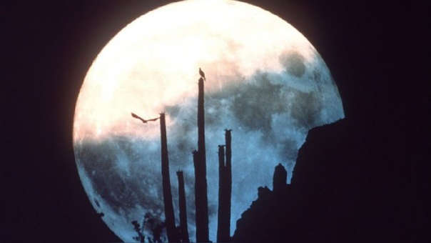 Vista de la luna desde Arizona, Estados Unidos.