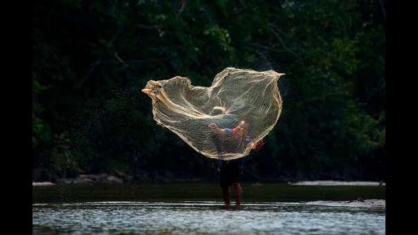 Conoce a la primera reserva comunal que ejecuta el REDD Indígena Amazónico en Perú