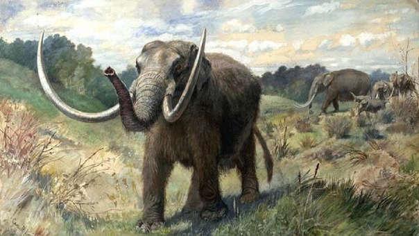 Representación de elefantes prehistóricos
