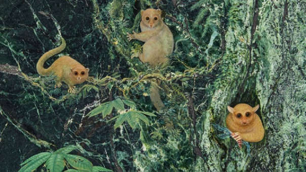 Investigadores y el artista Randy Kirk produjeron su propia representación de lo que podría haber sido la especie.