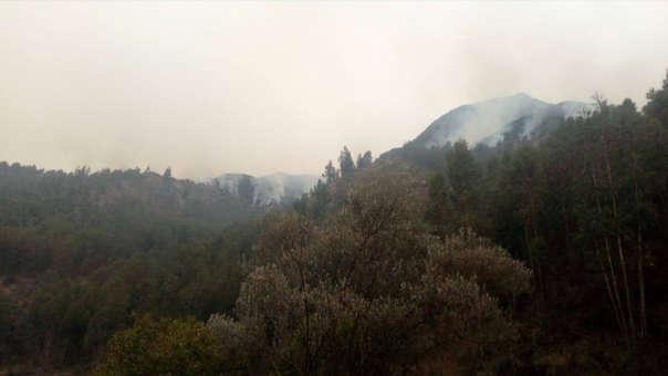 En lo que va del mes de septiembre se han producido cinco incendios forestales en las zonas de la sierra del país.