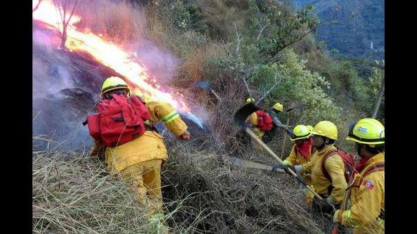 Preocupa aumento de incendios forestales y ausencia de plan para enfrentarlos