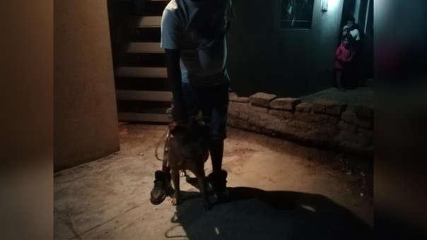 Dueño y perro agresivo se encuentran en la comisaría de Monsefú