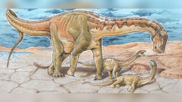 Una saurópodo cercano al de los restos hallados en Argentina
