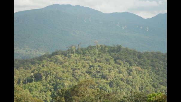 ACP Monte Puyo