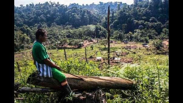 Asháninkas en Perú: un pueblo indígena que vive entre narcos, invasores y terroristas