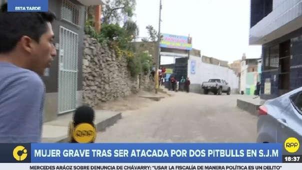 Mujer quedó grave tras ser atacada por dos perros.