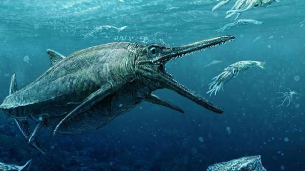 El ictiosaurio es un reptil marino de aspecto semejante a algunos cetáceos que vivió hace en torno a 180 millones de años