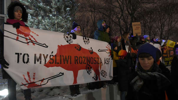 Manifestantes en Varsovia en contra de la matanza de jabalíes.