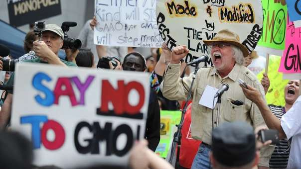 Los investigadores descubrieron que los oponentes extremos de los alimentos con organismos genéticamente modificados (GMO) son los que menos saben sobre el tema, pero creen que son los que más saben.