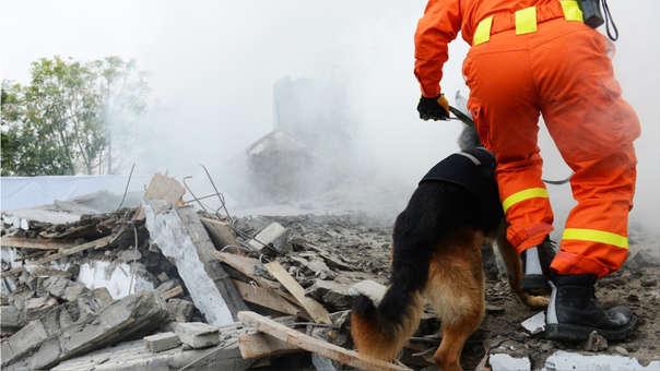 La frecuencia de sismos en gran parte de la región debe alentarnos a prevenir desastres y a tomar con seriedad los simulacros