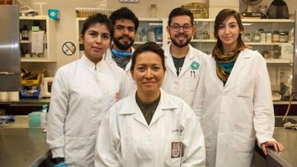 Equipo liderado por la investigadora Eva Ramón Gallegos, del IPN, México.